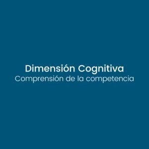 dimensión cognitiva 3d inventory